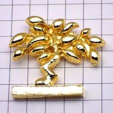 ピンズ・金色オリーブの木の盆栽プロヴァンス南仏