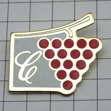 ピンズ・ワイン酒ブドウ葡萄