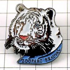 ピンズ・動物園ホワイトタイガー虎