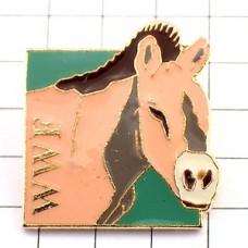 ピンズ・驢馬ロバ/WWF世界自然保護基金