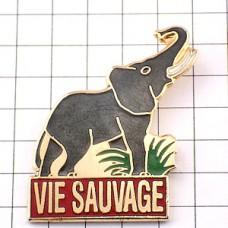 ピンバッジ・象ゾウ野性の暮らし