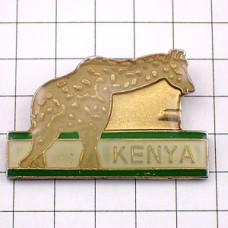 ピンズ・ケニヤのキリン動物アフリカ