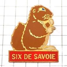 ピンズ・チーズ会社サヴォア地方リス栗鼠