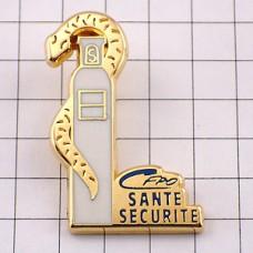 ピンズ・金色の蛇ヘビ医療