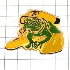 ピンズ・スキューバダイビングするカエル蛙