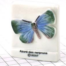 フェーブ・蝶々ルリシジミ/WWF世界自然保護基金