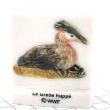 フェーブ・カンムリカイツブリ/WWF世界自然保護基金