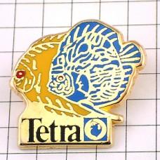 ピンズ・テトラ熱帯魚二匹