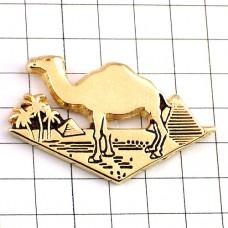 ピンズ・ラクダ駱駝ピラミッド古代エジプト文明