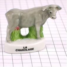 フェブ・シャロレーズ牛