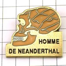 ピンズ・ネアンデルタール人の頭蓋骨