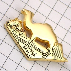 ピンズ・らくだとピラミッド駱駝エジプト