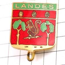 ブローチ・ランド県リス栗鼠の紋章松ぼっくり