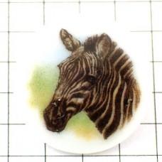 ピンズ・シマウマの絵リモージュ陶磁器