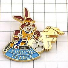 ピンズ・サッカーするウサギ球ユーロ大会フランスF