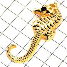 タツノオトシゴ竜の落し子