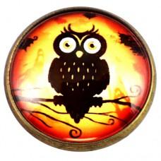 ピンズ・New!大きな目のフクロウ鳥ミミズク梟