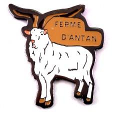 ピンズ・農場の白い山羊ヤギ一頭
