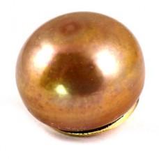 ピンバッジ・New!茶色い真珠パール貝