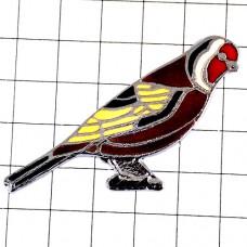 ピンズ・小鳥