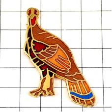 ピンズ・雉キジ茶色い鳥