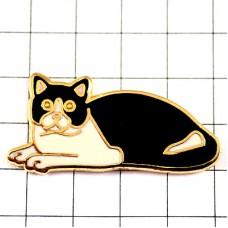 ネコ猫ねこ