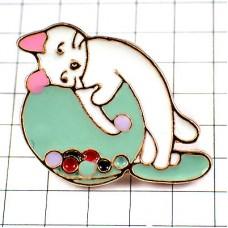 ピンズ・水槽の底のビー玉と猫