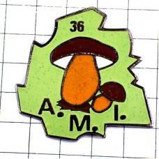 ピンバッジ・アンドル県のキノコきのこマッシュルーム茸