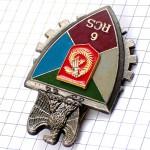 ブローチ・第6統制支援連隊フランス軍ミリタリー紋章イーグル鷲