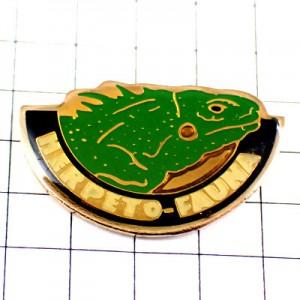ピンバッジ・緑色のイグアナ顔を出す