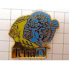 ピンズ・テトラ熱帯魚