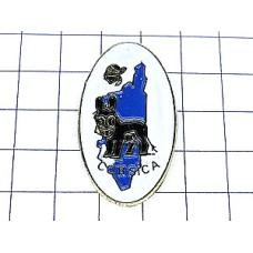 ピンズ・黒いロバ驢馬コルシカ島