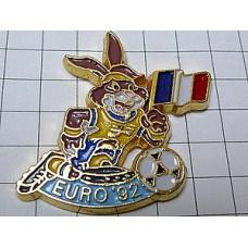ピンズ・サッカーするウサギ球ユーロ大会フランス国旗